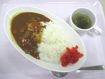 仙台 宮城県庁食堂 カレー