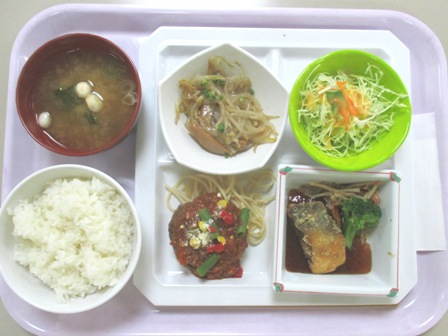 仙台 宮城県庁食堂 日替わりランチセット(サバ竜田おろしソース+ミートソースハンバーグ)